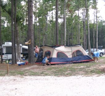 We have 39 large wooded campsites