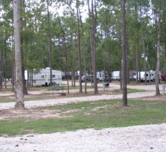 Rock'n E RV Park is home to some of the best Wooded Family Camping in east Texas.